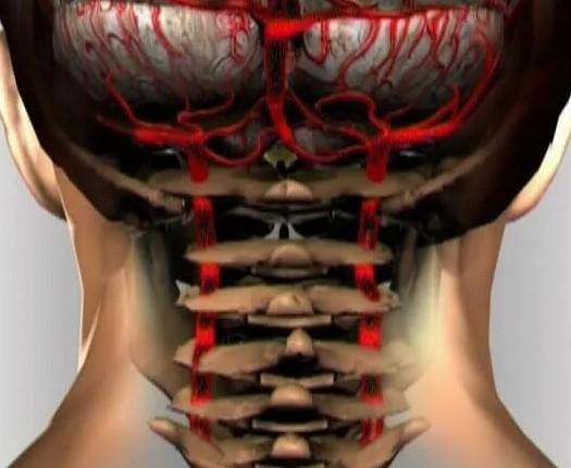 Болит и давит затылок - Иногда кружится голова