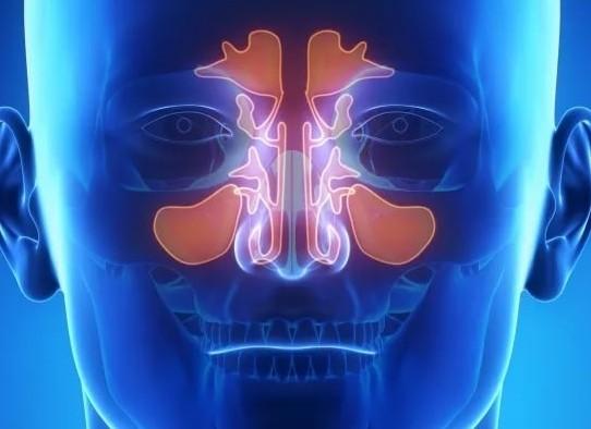 Болит лоб при насморке не гайморит